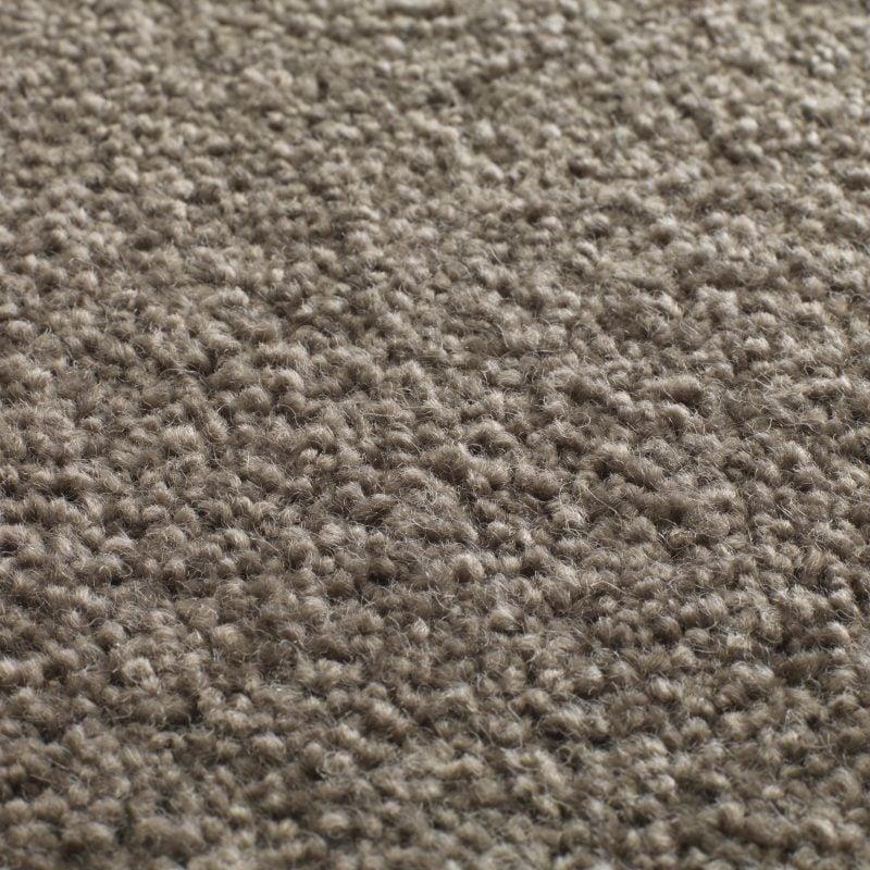 Tapanui Carpets